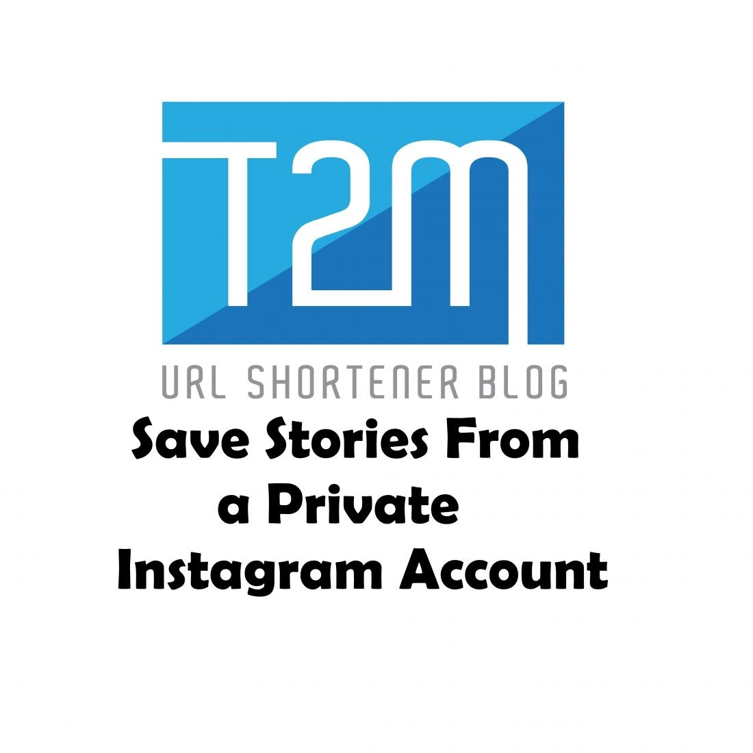 Save Stories From a Private Instagram Account | T2M Blog